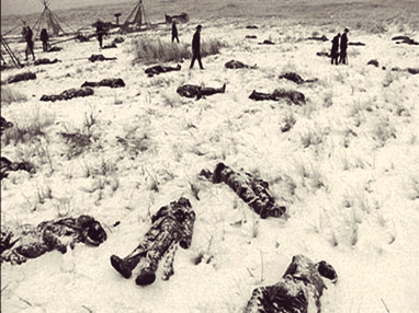 Wounded-Knee-deaths-(Zenzoneforum.com)